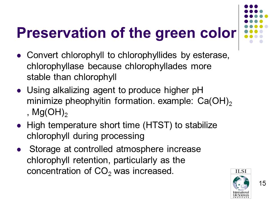 15 Preservation of the green color Convert chlorophyll to chlorophyllides by esterase, chlorophyllase because chlorophyllades more stable than chlorophyll Using alkalizing agent to produce higher pH minimize pheophyitin formation.