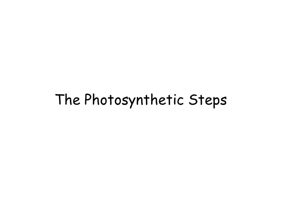 The Photosynthetic Steps