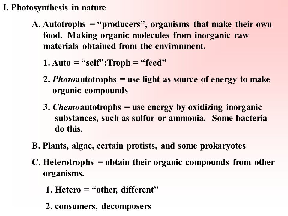 "I. Photosynthesis in nature A. Autotrophs = ""producers"", organisms that make their own food. Making organic molecules from inorganic raw materials obt"