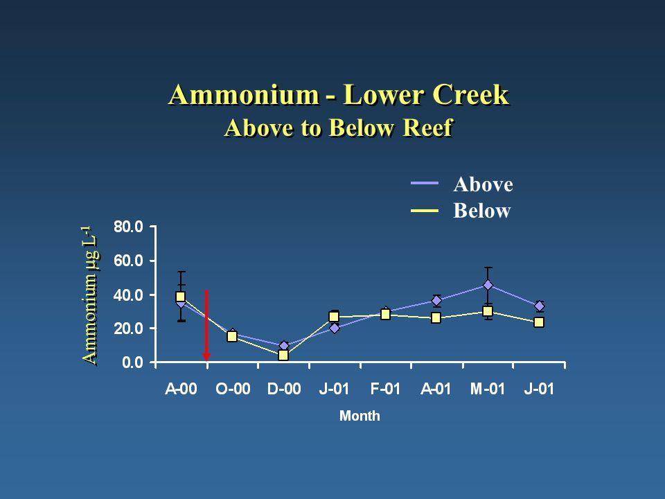Ammonium - Lower Creek Above to Below Reef Ammonium µg L -1 Above Below