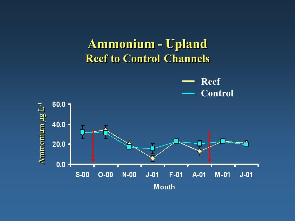 Ammonium - Upland Reef to Control Channels Ammonium µg L -1 Reef Control
