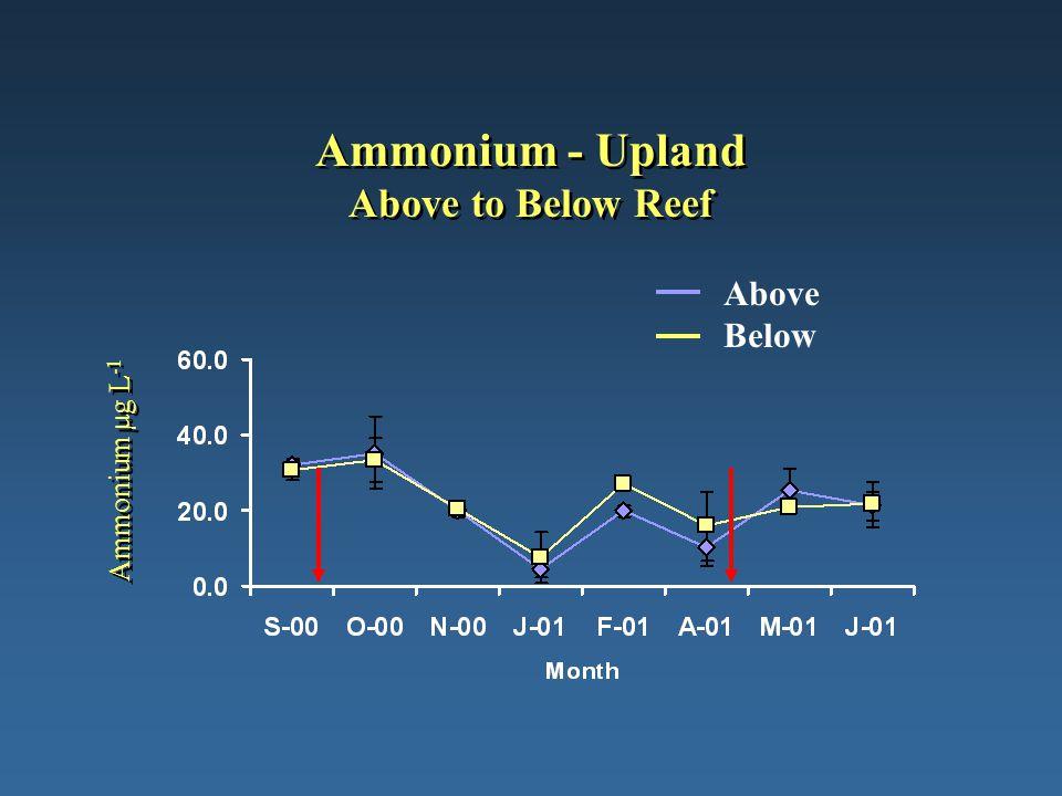 Ammonium - Upland Above to Below Reef Ammonium µg L -1 Above Below