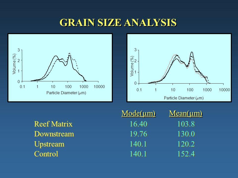 GRAIN SIZE ANALYSIS 0 1 2 3 0.1110100100010000 Particle Diameter (  m) Volume (%) 0 1 2 3 0.1110100100010000 Particle Diameter (  m) Volume (%) Reef