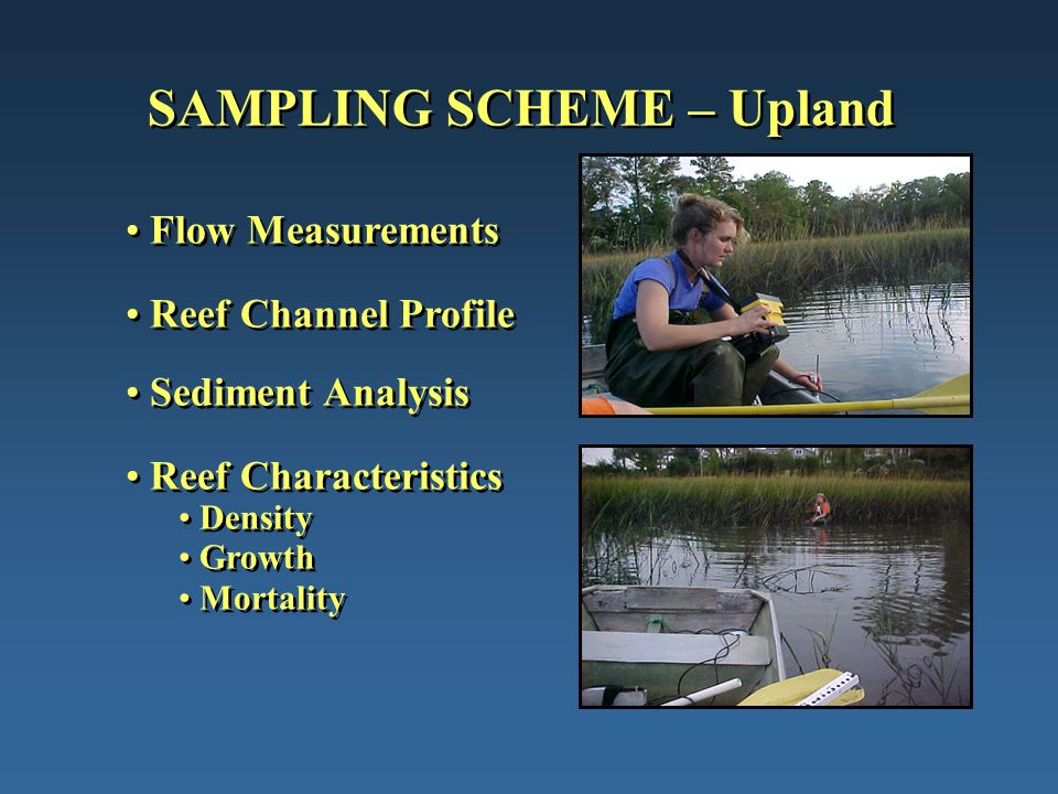 SAMPLING SCHEME – Upland Flow Measurements Reef Channel Profile Sediment Analysis Reef Characteristics Density Growth Mortality Flow Measurements Reef