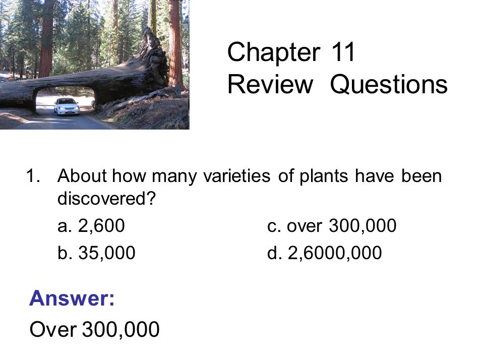 1.About how many varieties of plants have been discovered.