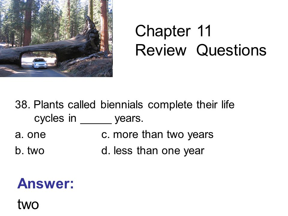 38. Plants called biennials complete their life cycles in _____ years.
