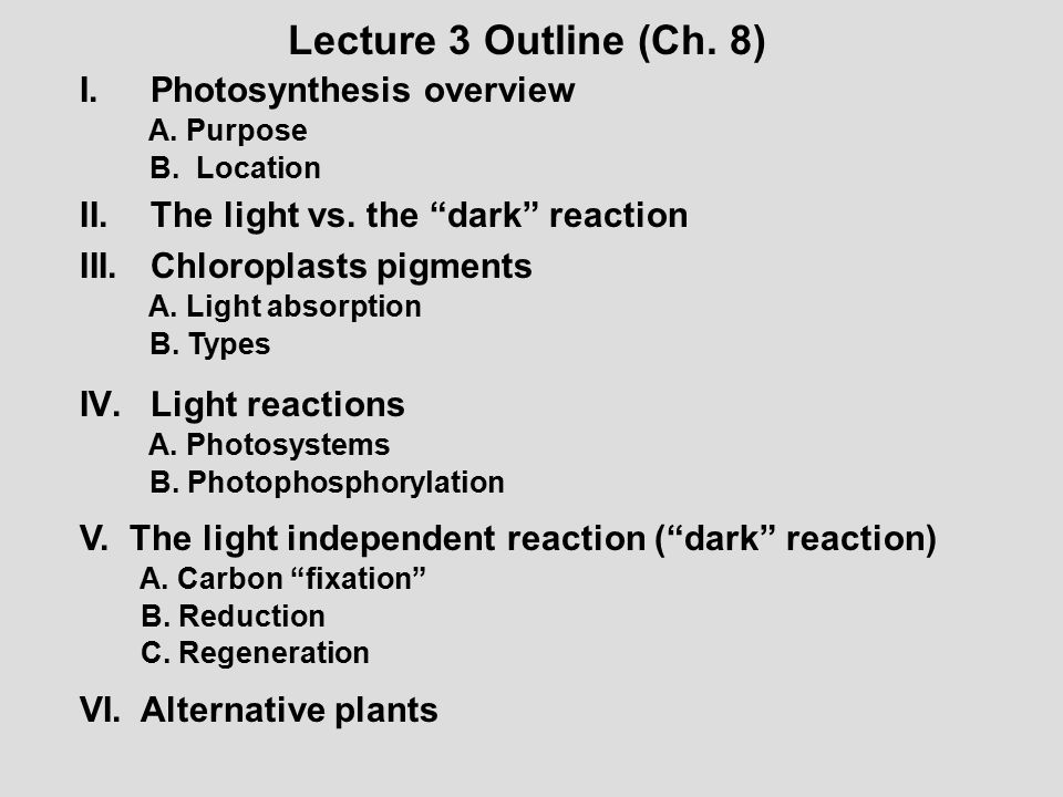 """Lecture 3 Outline (Ch. 8) I.Photosynthesis overview A. Purpose B. Location II.The light vs. the """"dark"""" reaction III.Chloroplasts pigments A. Light abs"""