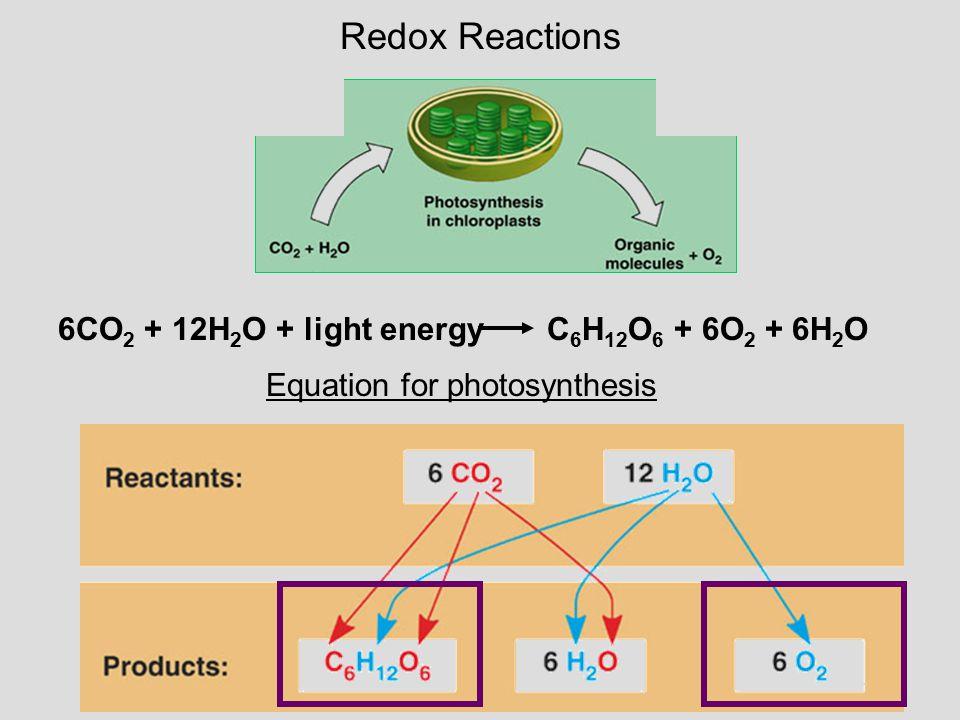 Redox Reactions Equation for photosynthesis 6CO 2 + 12H 2 O + light energy C 6 H 12 O 6 + 6O 2 + 6H 2 O