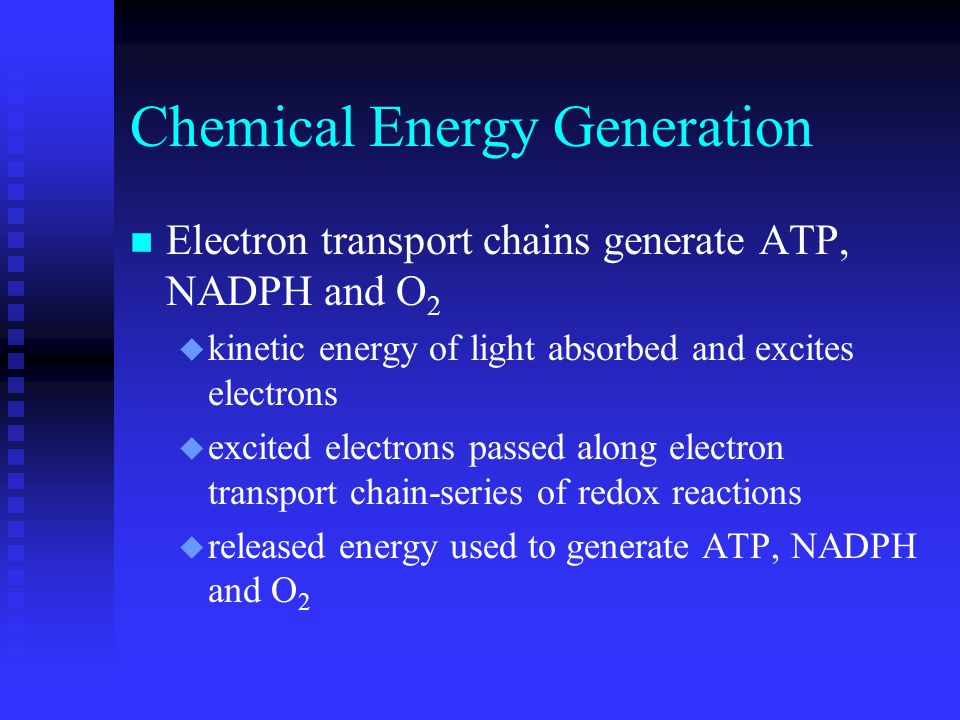 Chemical Energy Generation n Electron transport chains generate ATP, NADPH and O 2 u kinetic energy of light absorbed and excites electrons u excited electrons passed along electron transport chain-series of redox reactions u released energy used to generate ATP, NADPH and O 2