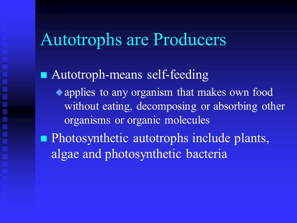 Carbon-fixing Variations n C 3 plants conserve water by closing stomata u allows buildup of O 2 in leaves u Rubisco fixes O 2 rather than CO 2 u called photorespiration F uses ATP and NADPH but makes no sugars