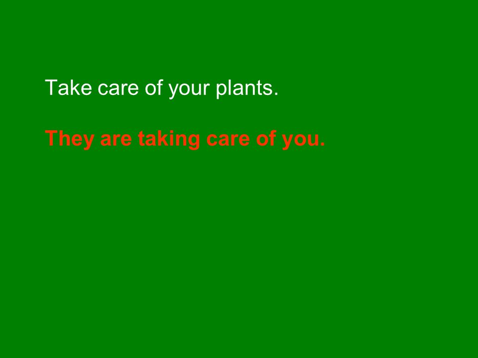 Take care of your plants. They are taking care of you.