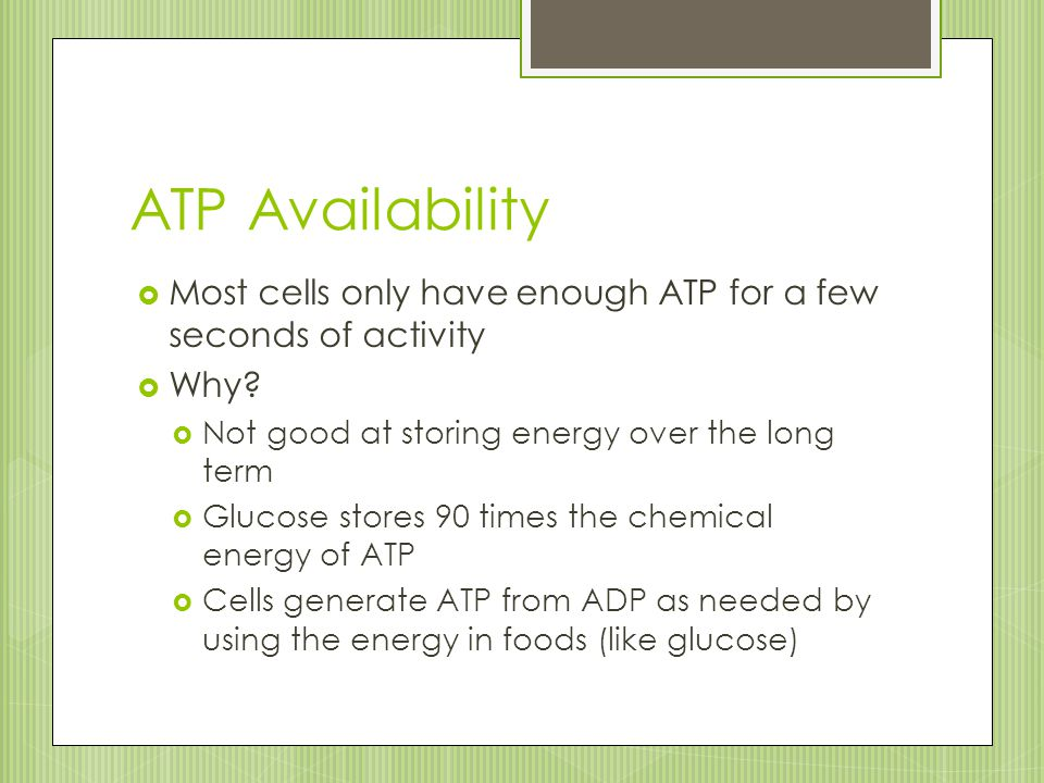 ATP Availability  Most cells only have enough ATP for a few seconds of activity  Why?  Not good at storing energy over the long term  Glucose stor