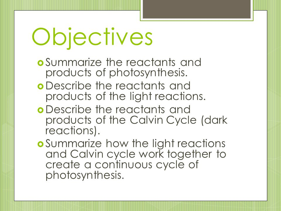 Objectives  Summarize the reactants and products of photosynthesis.  Describe the reactants and products of the light reactions.  Describe the reac