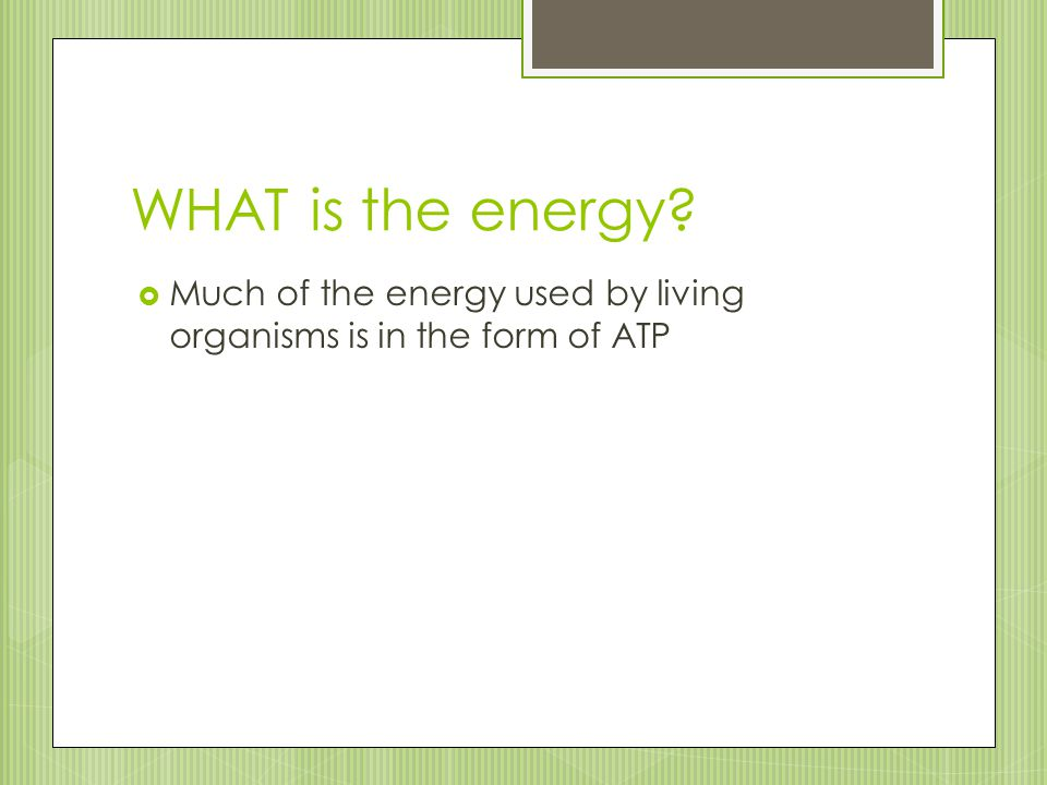 WHAT is the energy?  Much of the energy used by living organisms is in the form of ATP
