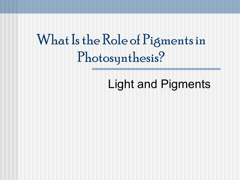 What Is the Role of Pigments in Photosynthesis? Light and Pigments