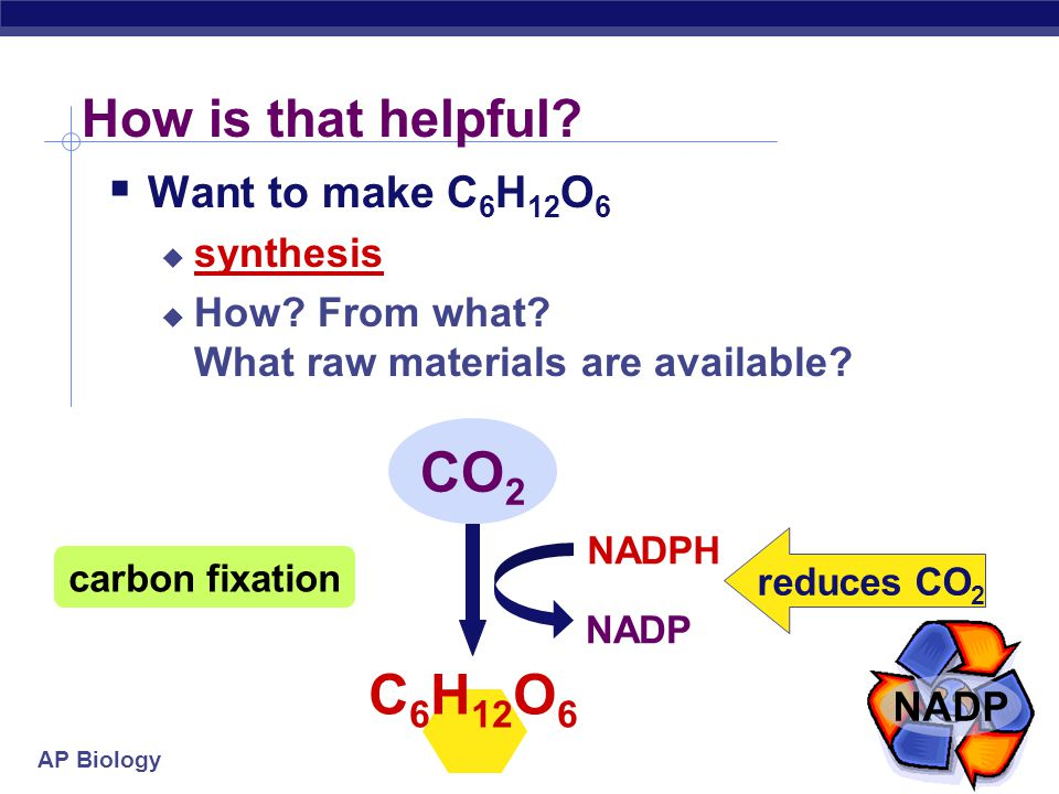 AP Biology Light reactions  Convert solar energy to chemical energy  ATP  NADPH  What can we do now?  energy  reducing power   build stuff !!