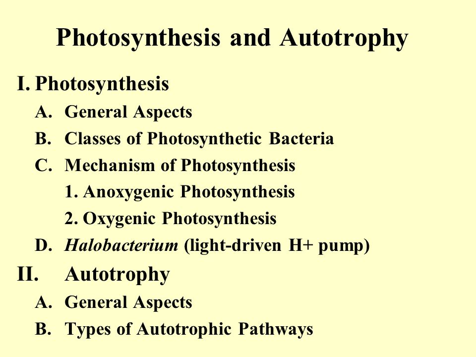 Mechanism of Photosynthesis Oxygenic Photosynthesis Photosystems I & II Noncyclic Your text, Fig.