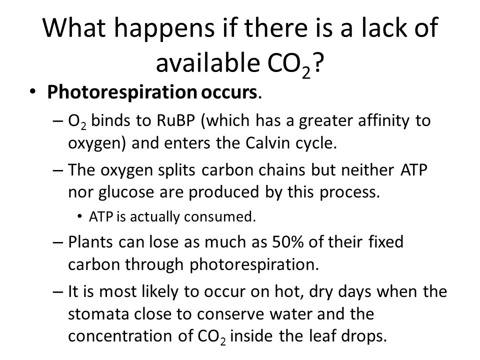 What happens if there is a lack of available CO 2 .