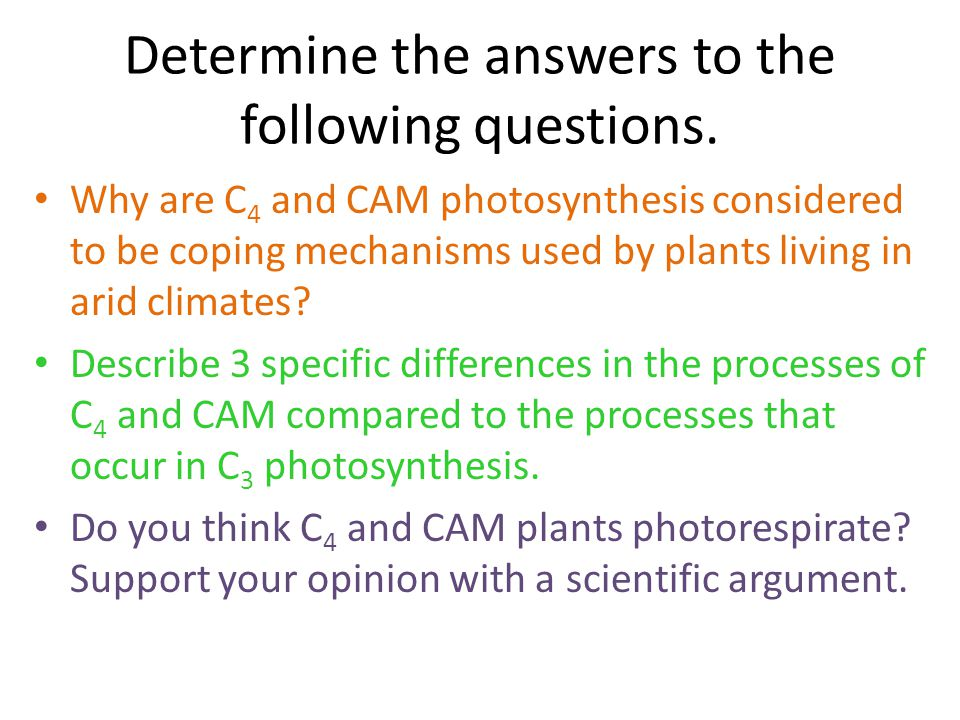 Determine the answers to the following questions.