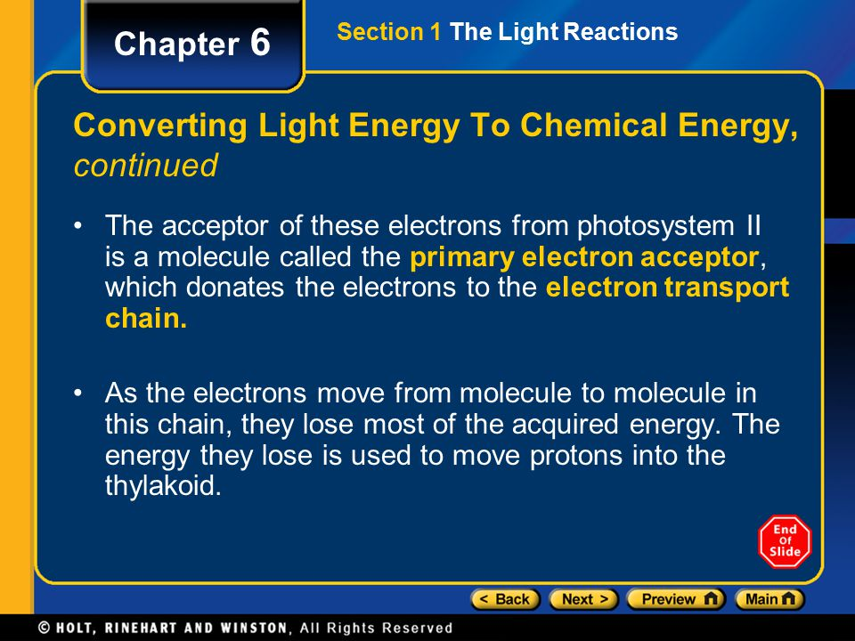 Section 1 The Light Reactions Chapter 6 Converting Light Energy To Chemical Energy, continued The acceptor of these electrons from photosystem II is a molecule called the primary electron acceptor, which donates the electrons to the electron transport chain.