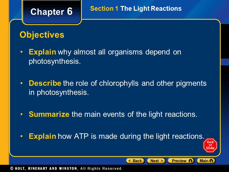 Section 1 The Light Reactions Chapter 6 Objectives Explain why almost all organisms depend on photosynthesis.