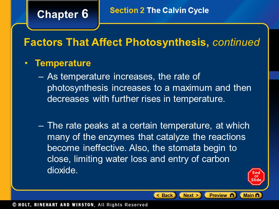 Chapter 6 Factors That Affect Photosynthesis, continued Temperature –As temperature increases, the rate of photosynthesis increases to a maximum and then decreases with further rises in temperature.