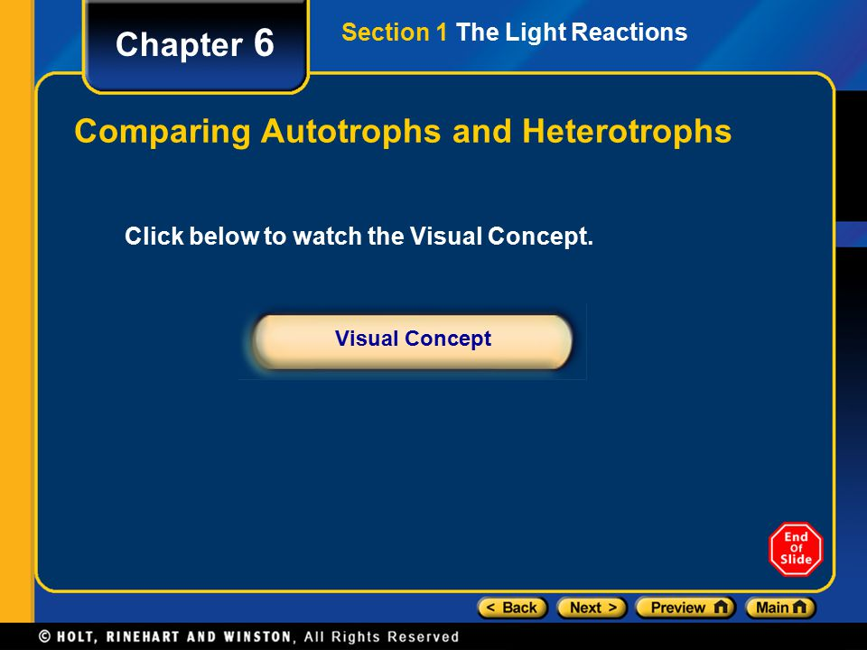 Chapter 6 Comparing Autotrophs and Heterotrophs Section 1 The Light Reactions Visual Concept Click below to watch the Visual Concept.