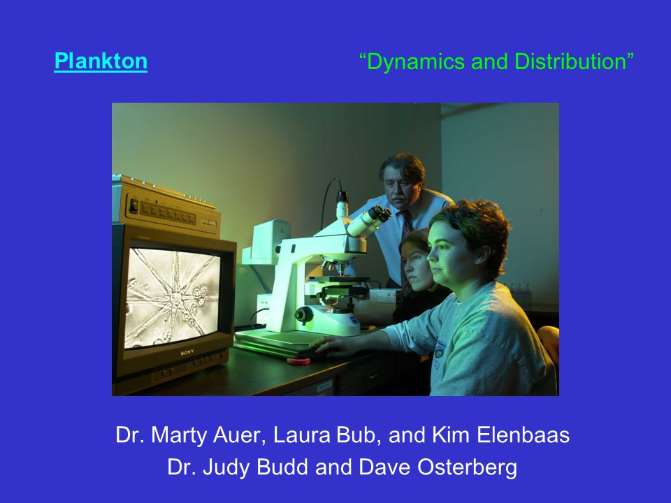 "Plankton Dr. Marty Auer, Laura Bub, and Kim Elenbaas Dr. Judy Budd and Dave Osterberg ""Dynamics and Distribution"""