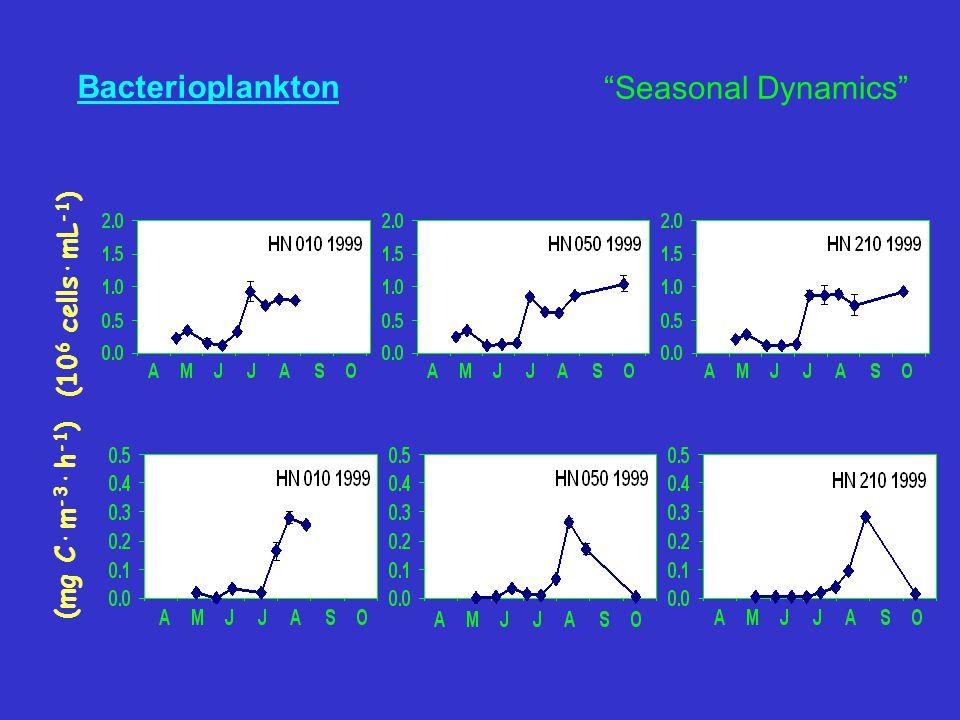 Bacterioplankton (10 6 cells·mL -1 ) (mg C·m -3 ·h -1 ) Seasonal Dynamics