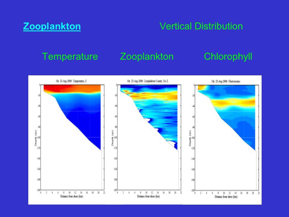 Zooplankton ChlorophyllTemperatureZooplankton Vertical Distribution