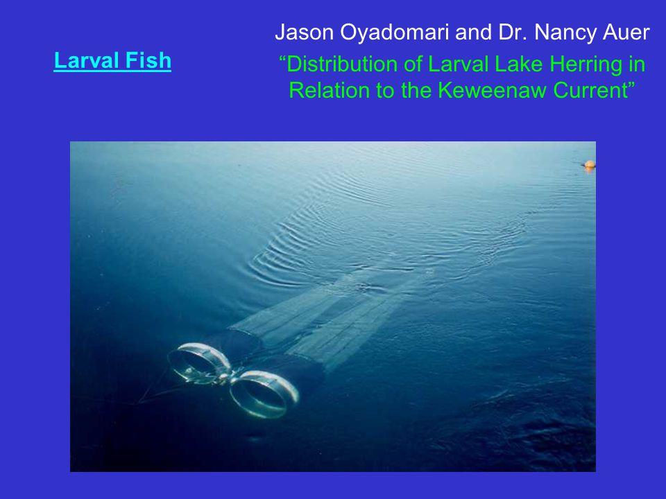 Larval Fish Jason Oyadomari and Dr.