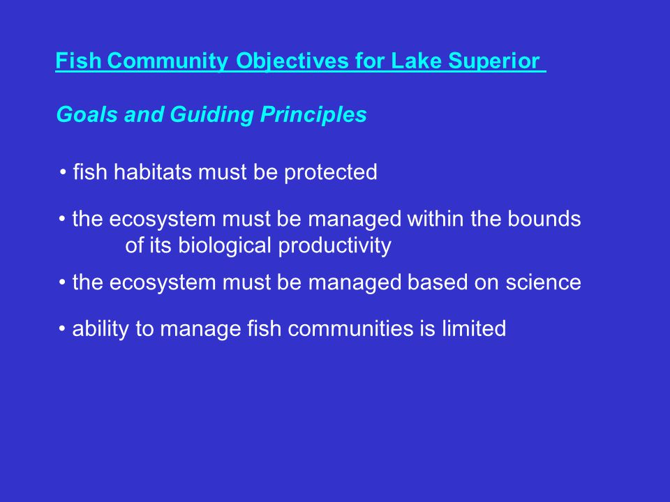 Fish Community Objectives for Lake Superior Goals and Guiding Principles the ecosystem must be managed within the bounds of its biological productivity the ecosystem must be managed based on science fish habitats must be protected ability to manage fish communities is limited