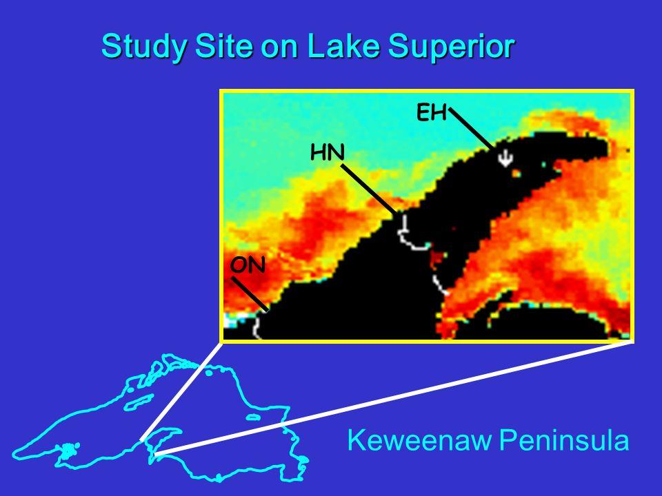 Study Site on Lake Superior ON HN EH Keweenaw Peninsula