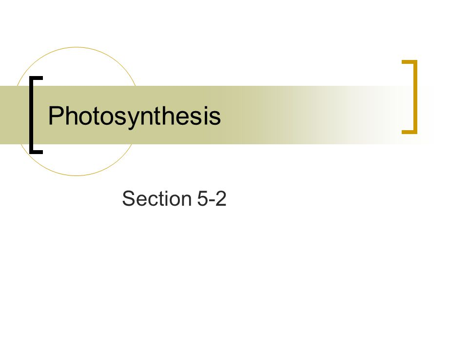 Stage One of Photosynthesis By using chlorophyll and carotenoids, plants absorb more light energy during photosynthesis.