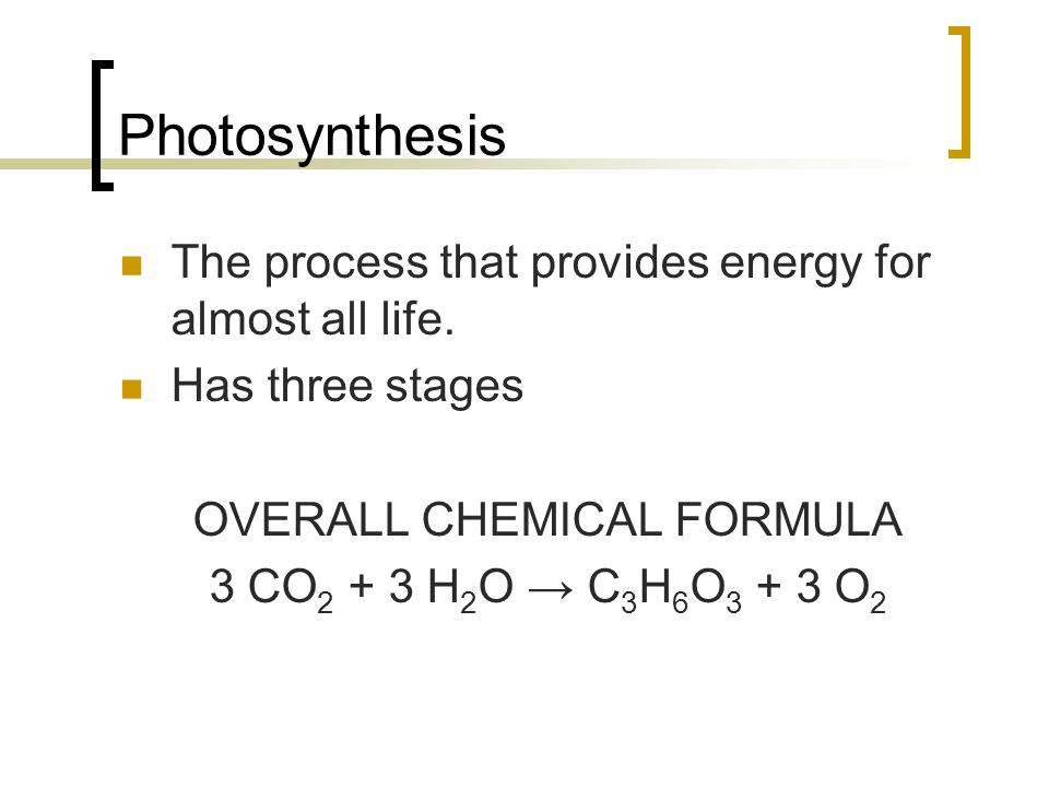 Stage One of Photosynthesis Excited electrons jump from chlorophyll molecules to other nearby molecules in the thylakoid membrane, where the electrons are used to power the second stage of photosynthesis.