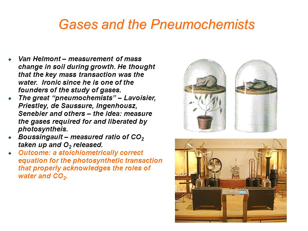 Gases and the Pneumochemists Van Helmont – measurement of mass change in soil during growth.
