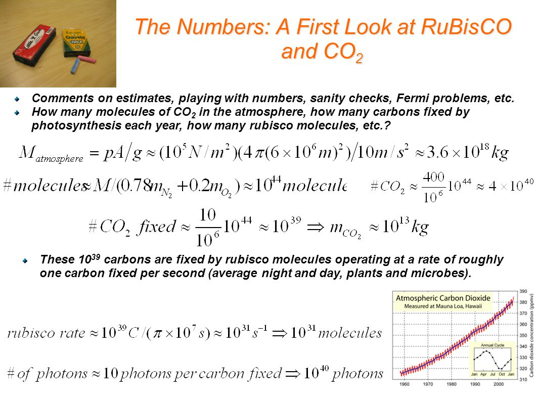 The Numbers: A First Look at RuBisCO and CO 2 Comments on estimates, playing with numbers, sanity checks, Fermi problems, etc.