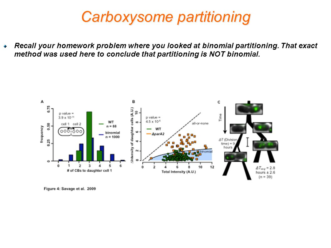 Carboxysome partitioning Recall your homework problem where you looked at binomial partitioning.