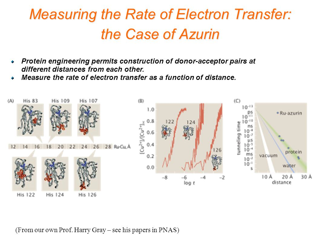 Measuring the Rate of Electron Transfer: the Case of Azurin (From our own Prof. Harry Gray – see his papers in PNAS) Protein engineering permits const