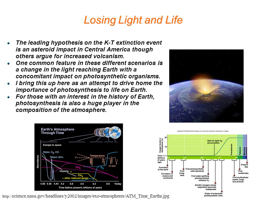 Losing Light and Life The leading hypothesis on the K-T extinction event is an asteroid impact in Central America though others argue for increased vo