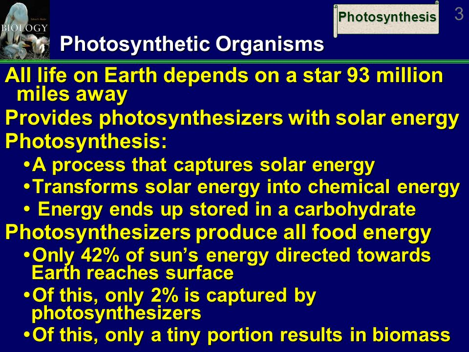 Photosynthesis 3 Photosynthetic Organisms All life on Earth depends on a star 93 million miles away Provides photosynthesizers with solar energy Photosynthesis:  A process that captures solar energy  Transforms solar energy into chemical energy  Energy ends up stored in a carbohydrate Photosynthesizers produce all food energy  Only 42% of sun's energy directed towards Earth reaches surface  Of this, only 2% is captured by photosynthesizers  Of this, only a tiny portion results in biomass