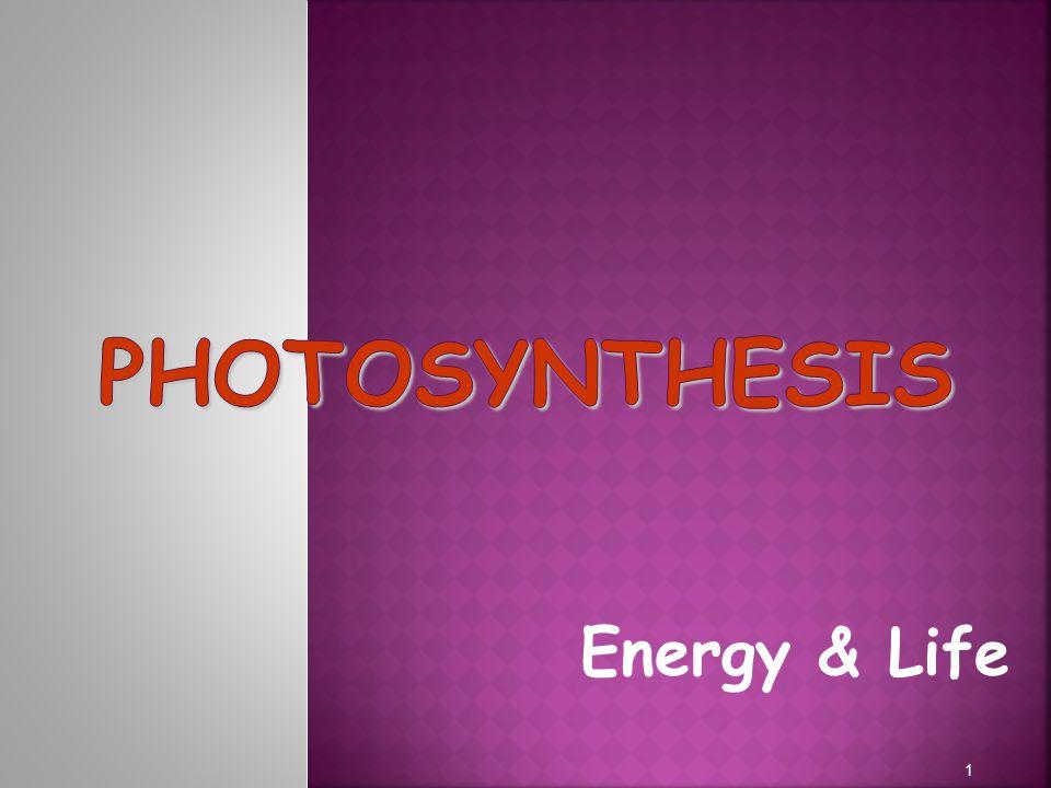Energy & Life 1