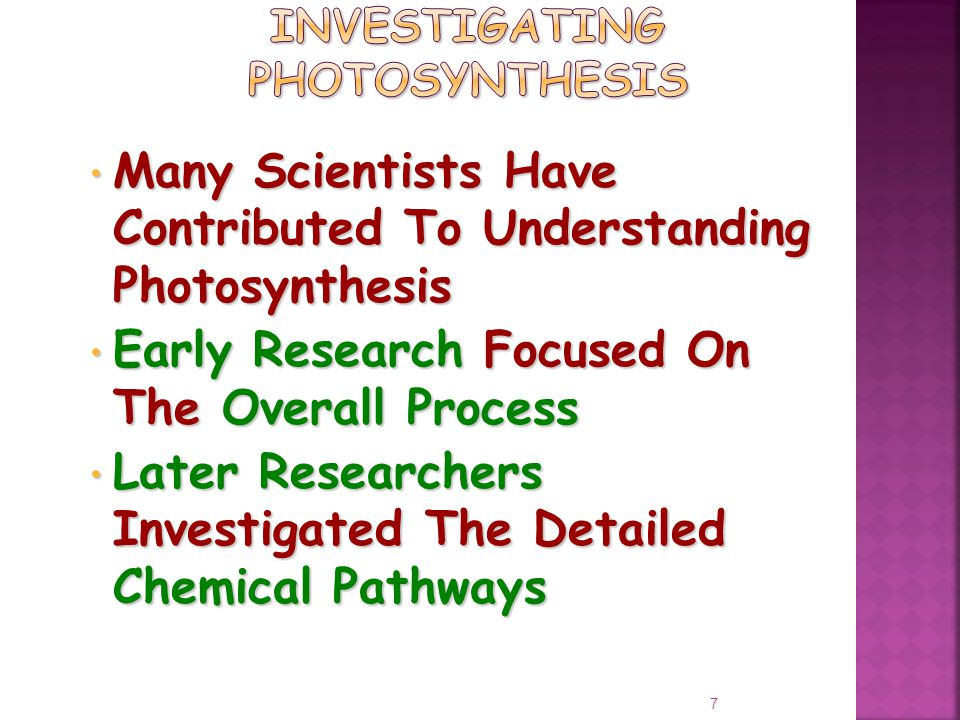 Many Scientists Have Contributed To Understanding Photosynthesis Many Scientists Have Contributed To Understanding Photosynthesis Early Research Focused On The Overall Process Early Research Focused On The Overall Process Later Researchers Investigated The Detailed Chemical Pathways Later Researchers Investigated The Detailed Chemical Pathways 7