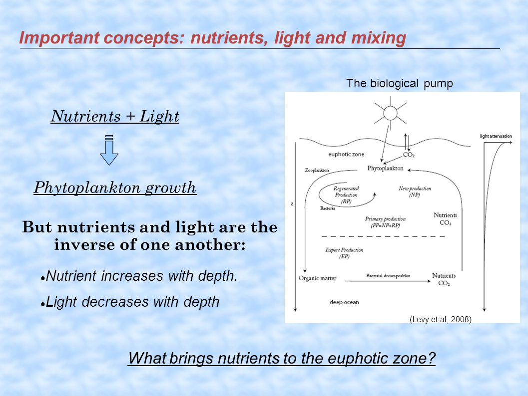 Important concepts: nutrients, light and mixing Nutrients + Light Phytoplankton growth But nutrients and light are the inverse of one another: What brings nutrients to the euphotic zone.