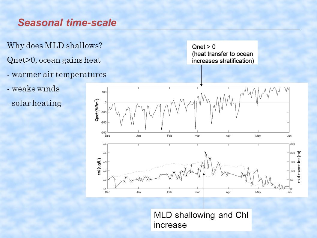 MLD shallowing and Chl increase Seasonal time-scale Why does MLD shallows.