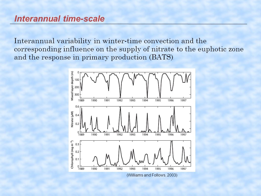 Interannual time-scale Interannual variability in winter-time convection and the corresponding influence on the supply of nitrate to the euphotic zone and the response in primary production (BATS).