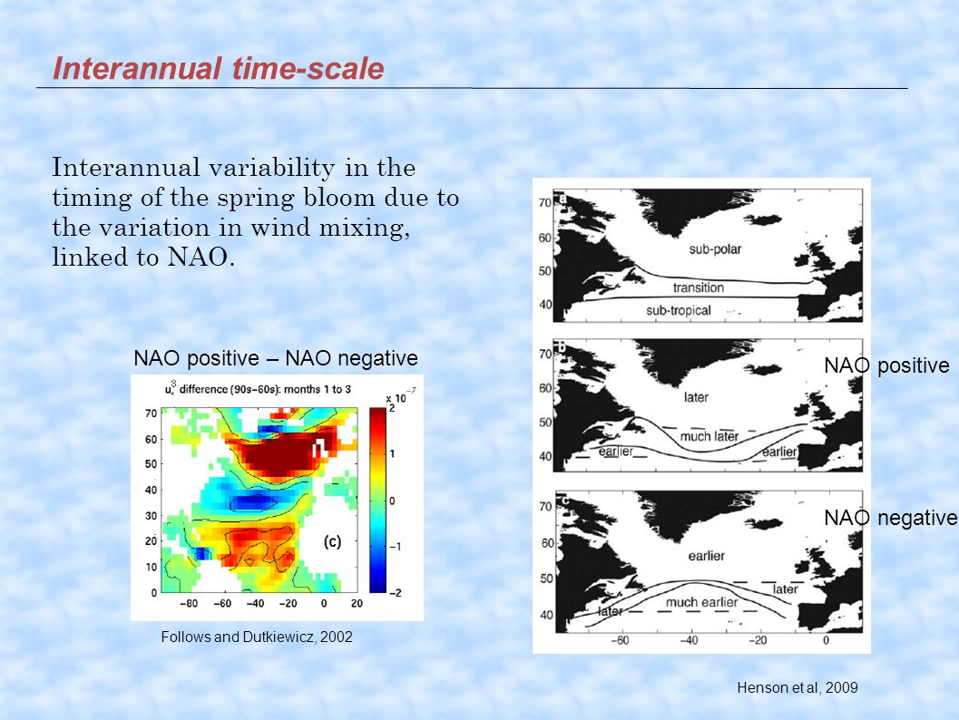 Interannual time-scale Henson et al, 2009 Follows and Dutkiewicz, 2002 NAO positive NAO negative NAO positive – NAO negative Interannual variability in the timing of the spring bloom due to the variation in wind mixing, linked to NAO.