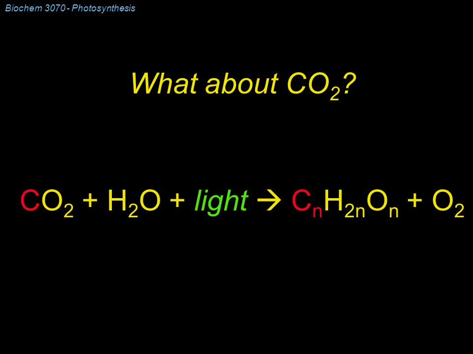 Biochem 3070 - Photosynthesis What about CO 2 CO 2 + H 2 O + light  C n H 2n O n + O 2