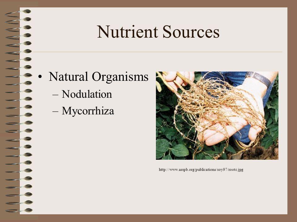 Nutrient Sources Natural Organisms –Nodulation –Mycorrhiza http://www.arspb.org/publications/soy97/rootc.jpg