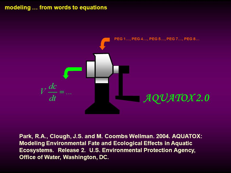 modeling … from words to equations PEG 1…, PEG 4…, PEG 5…, PEG 7…, PEG 8… AQUATOX 2.0 Park, R.A., Clough, J.S.